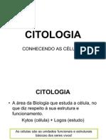 AULA citologia EJA