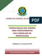 consolidacao2010