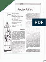 Pedro Pajaro