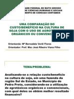 UMA COMPARAÇÃO DO CUSTO BENEFÍCIO NA CULTURA DE SOJA COM O USO DE AGROTÓXICOS ORGÂNICOS OU CONVENCIONAIS