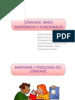 ANATOMÍA Y FISIOLOGÍA DEL LENGUAJE