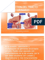 Clases 12 Infeccion Del Tracto Urinario