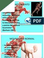 mecanismo postural