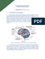 lucrarea7_0 (EEG-II)