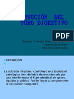 Obstruccion Del Tubo Digestivo