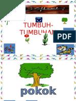 TUMBUH-TUMBUHAN pra