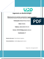 UPPe_Proyecto_Eliminacion de Arsenico Presente en Aguas Potables