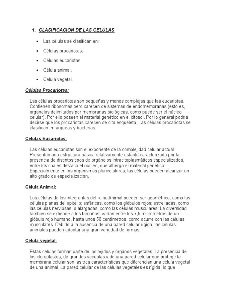 Clasificacion de las celulas for Definicion de cuarto