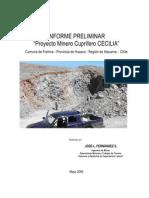 Millenium-Mineralls Cobre Produccion Norte 2