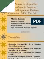 WEINER & ASOCIADOS-Martin Lazzaro-Bioenergy World Americas 2006