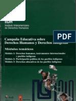 Campaña Educativa sobre DDHH y Derechos Indígenas