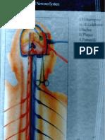 Approaches in Neurosurgery