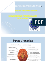 16 Pares Craneales