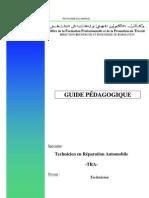 GUIDE PÉDAGOGIQUE REM-TRE