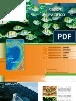 Guia Region Pacifico
