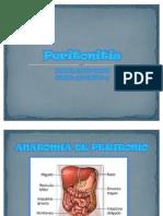 2 Peritonitis - Karina Barco