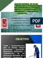 20581972 Guia de Atencion Integral de Salud Ocupacional Basada en La Evidencia Para Trabajadores Expuestos a Plaguicidas ores de La Colinesterasa