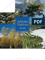 Arboles NAtivos Chile
