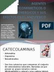 AGENTES_SIMPATICOMIMETICOS