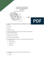 cuestionario primero 2010-2011 biolo