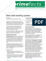 Beef Cattle Breeding Systems