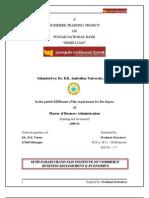 27205579 PNB Home Loan Project Report Prashant Srivastava