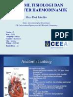 Anatomy, Fisiology and Haemodinamic Parameter