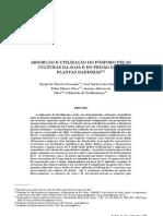Absorção e utilização do fósforo pelas culturas da soja e do feijão e por plantas daninhas