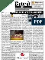 Gurù Magazine num. 20 - luglio 2011