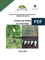 Manual Tecnico de Pipian