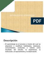 NATURALEZA DEL APRENDIZAJE  PPP May 28 - Presentación resumida 2