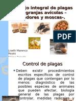 Manejo integral de plagas en granjas avícolas –