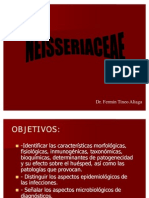 neisseriae-dr.tineo