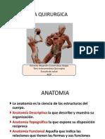 Clase Anato Prof Covarrubias