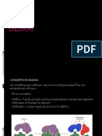 PRESENTACION ENZIMAS (1)