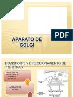 Transporte y Direccionamiento de Proteínas
