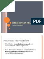 Embriología pulmonar
