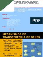M. de Transf. genética