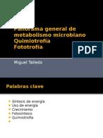 Panorama General Del Metabolismo en bacterias