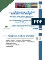 Jatropha gen v260307_lr