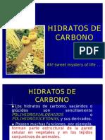 3)_HIDRATOS_DE_CARBONO