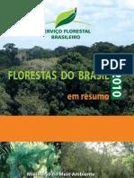 Florestas Do Brasil Em Resumo SFB 2010