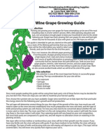 How do I grow grapes for winemaking at home?