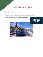 Rapport de Stage BON