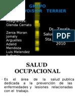 Salud Ocupacional - Enfermedades Ocupacionales