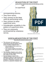 5. Vasc., 6.Lymph.& 7. Inn. of the Foot 209-10