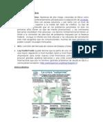 Caso Crisis Financier A Vf -2