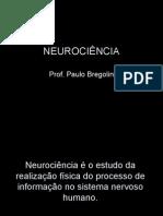 7902420-Neuroanatomia-Geral
