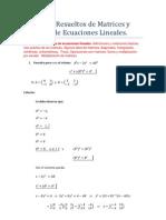 Matrices Sistemas(Ejercicios Resueltos