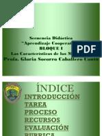secuencia didacticaB1